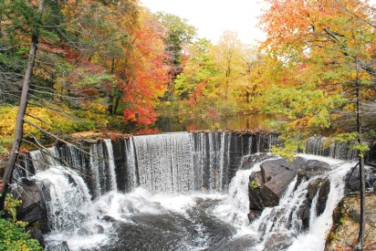Horseshoe Falls in AutumnPhoto Credit: Christopher Drew
